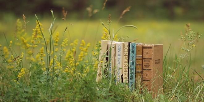 ТОП-3 Книги  із присмаком літа