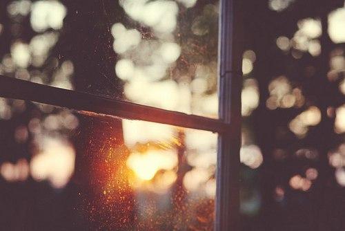 НЕ осіння палітра кольорів на Тижні актуального мистецтва у Львові (Дайджест подій)