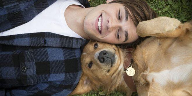 Пухнаста дружба у стрічці «Мета собаки»